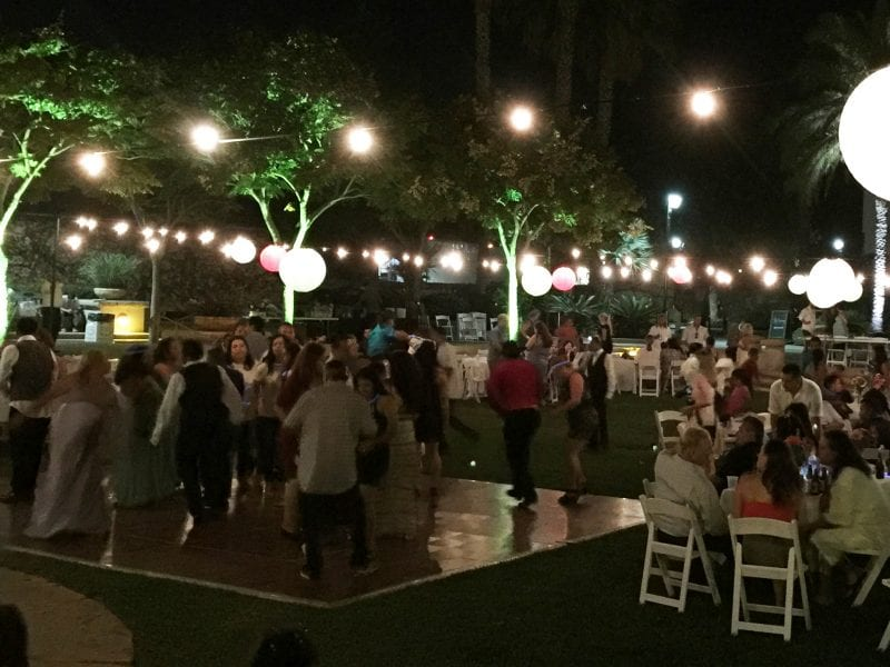 Chase Palm Park Weddings