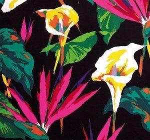 Bird of Paradise Print